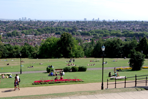 alexandra palace view
